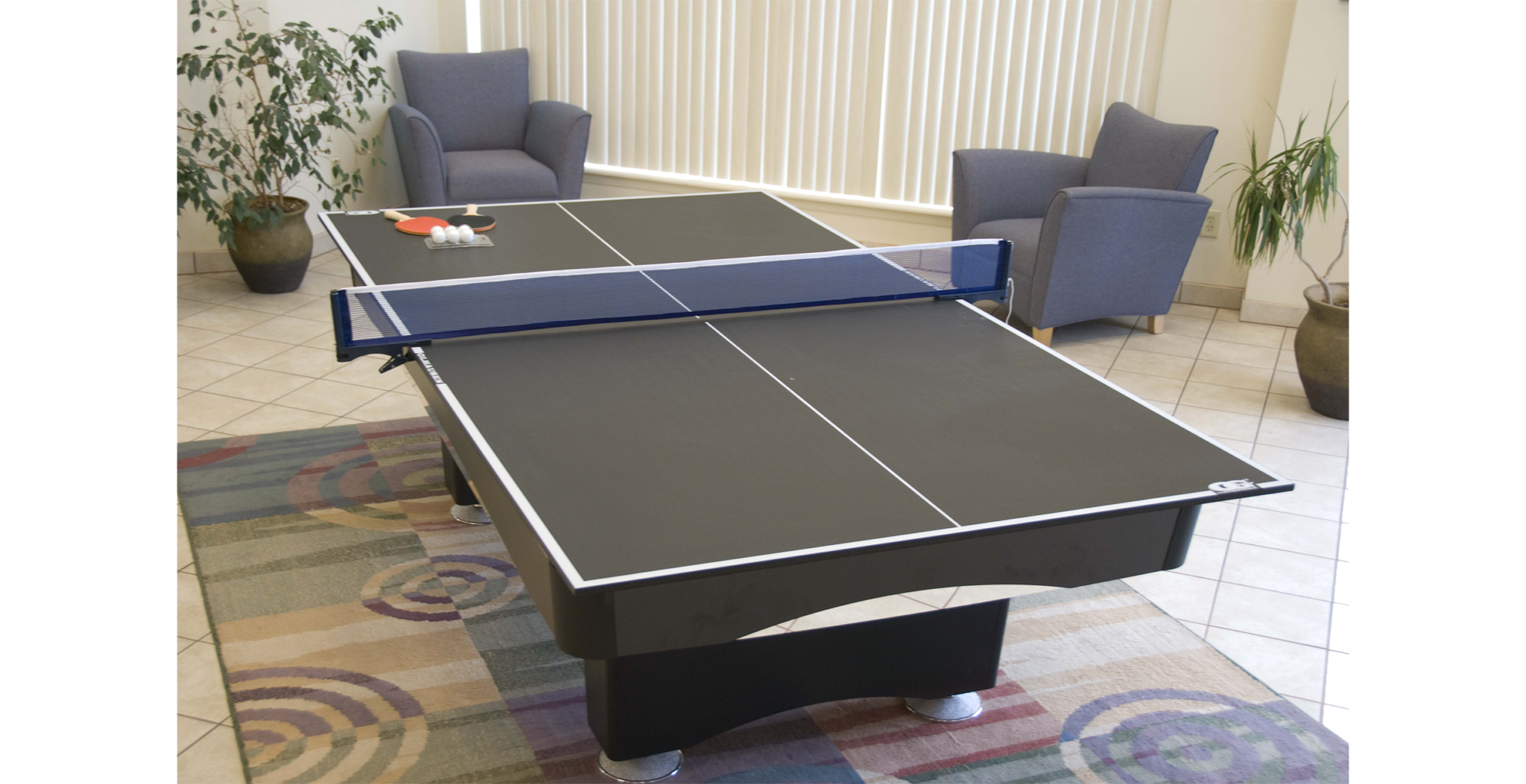 Olhausen Ping Pong Table Top Conversion